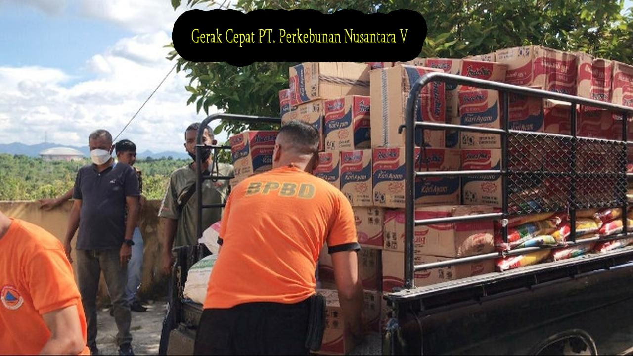 Gerak Cepat PT Perkebunan Nusantara V